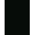 South Georgia Bank Logo
